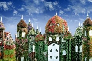 【世界最大花园】迪拜建造世界上最美的花园