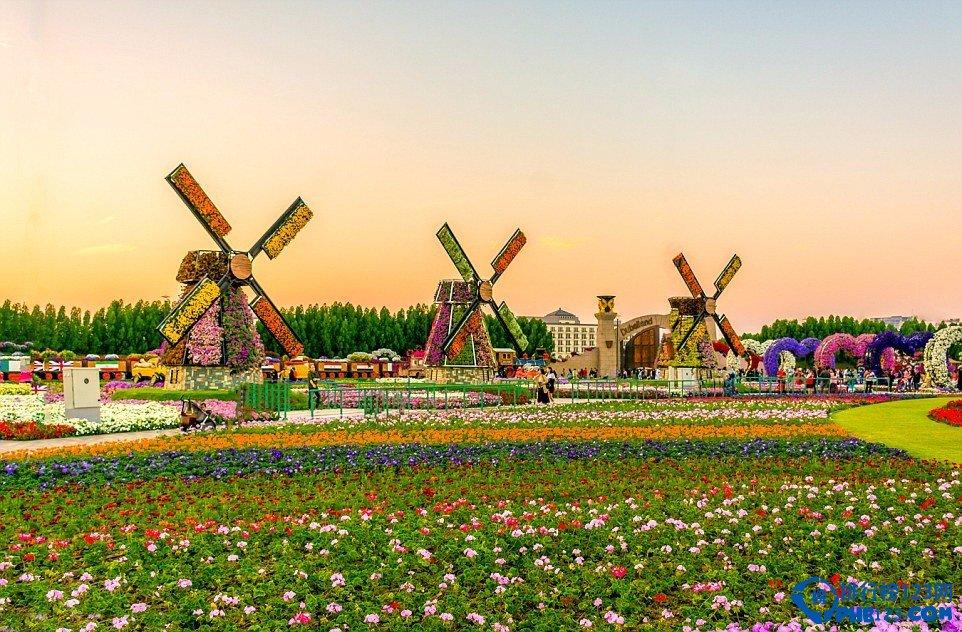 世界最大花园