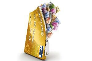 信用钱包终审中是什么意思,终审通过可以下款吗