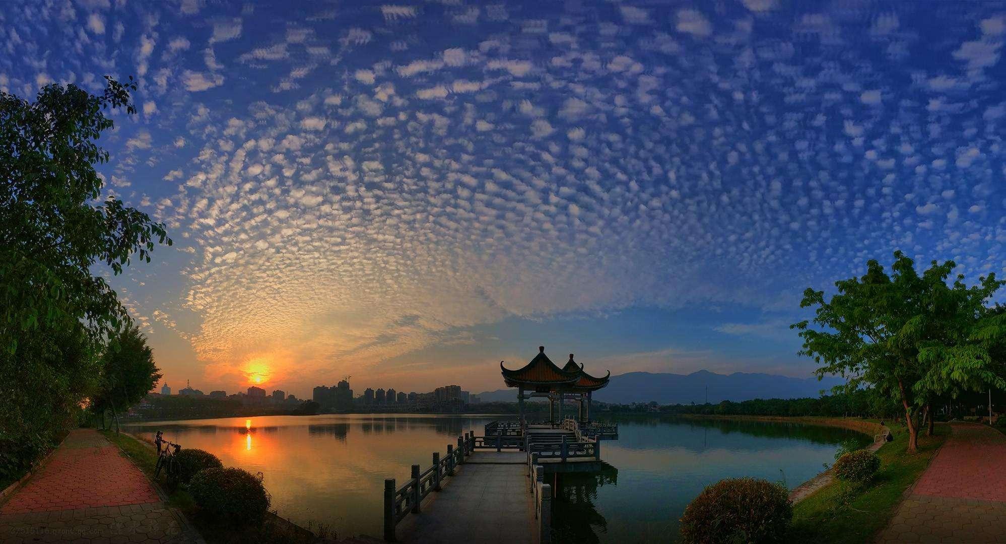 2017肇庆市各区人口数量排行榜,历年肇庆市人口数量排行榜