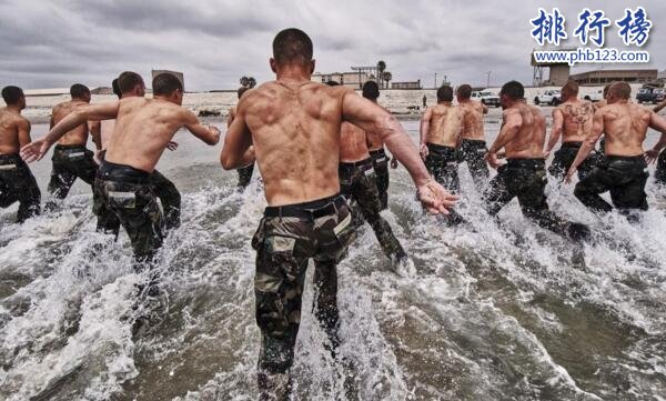 美国特种部队排名 海豹突击队杀敌如同胎囊取物