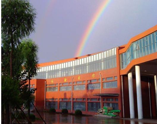 广州市重点中学有哪些?盘点广州市中学排名榜