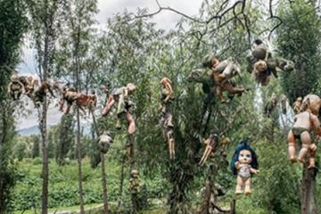 世界十大奇特岛屿:玩偶之岛娃娃遍地恐怖至极
