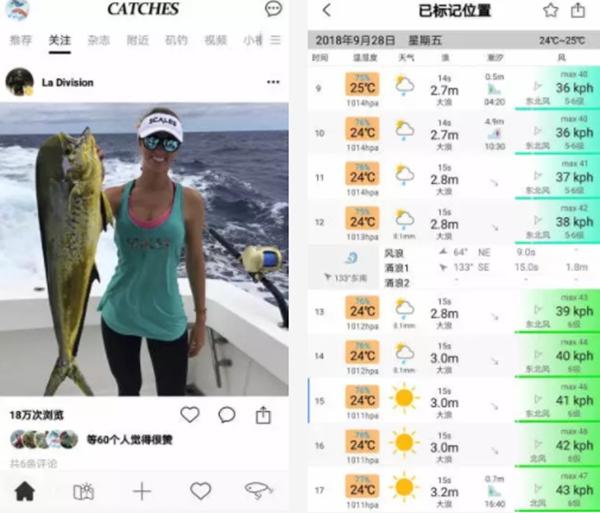 钓鱼app排行榜