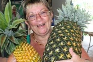 世界上最重的菠萝