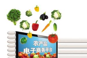 2016十大农产品电商平台排名