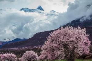 震撼人心的中国10大名山