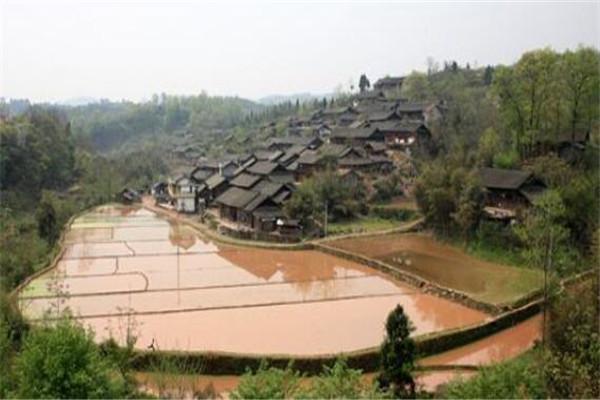 湖南省最穷的10个县,湖南最穷的十个县排名